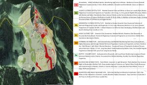 LH Property Geology